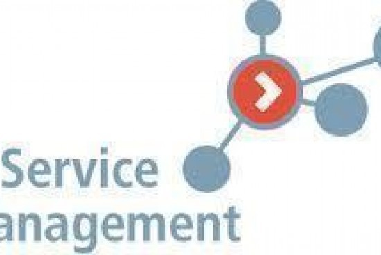 ITSM (Information Technology Service Management)