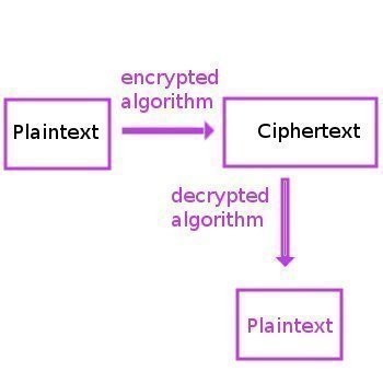 Plaintext and Ciphertext