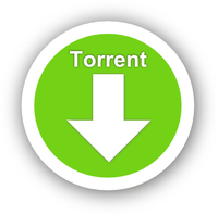 Cosa è il Torrent