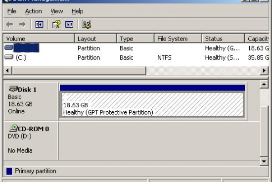 What is a GPT Protective Partition?