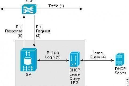 DHCP Leasing