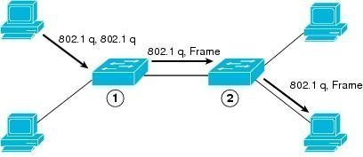 VLAN Hopping