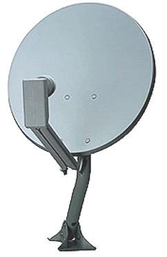 Dish 300