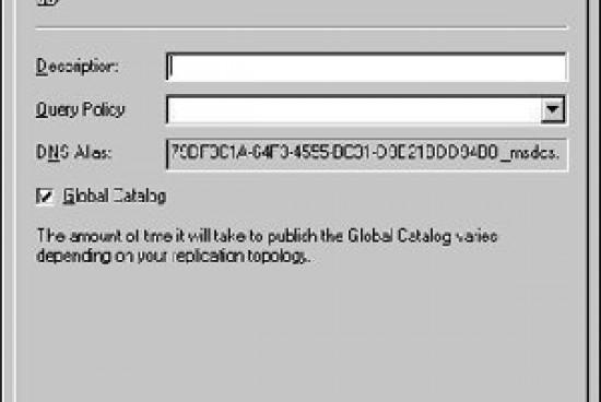 The Global Catalog Server