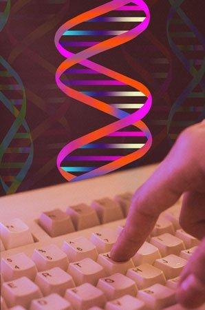 DNA Computer DNA Computer