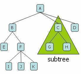 Tree and subtree