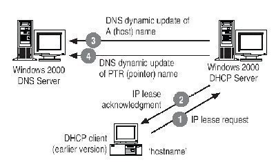 Integrating the DNS Server with DHCP and WINS