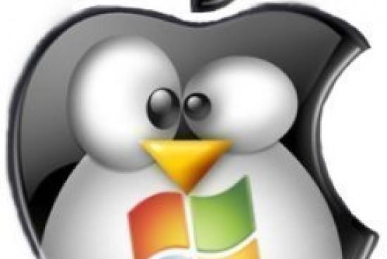 Macintosh and Windows Server Integration