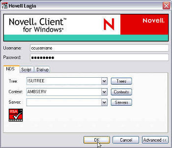 Novell Netware and Windows Server