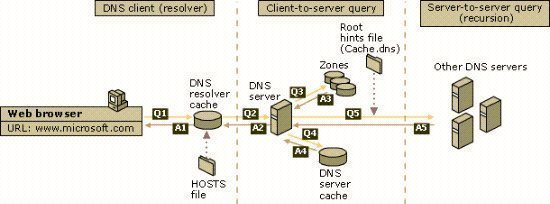 Understanding DNS Queries and Lookups