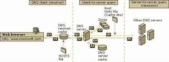 Understanding DNS Queries and Lookups